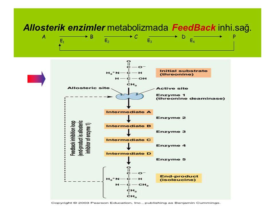 Allosterik enzimler metabolizmada FeedBack inhi.sağ.