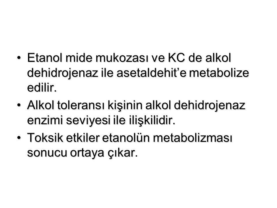 Etanol mide mukozası ve KC de alkol dehidrojenaz ile asetaldehit'e metabolize edilir.