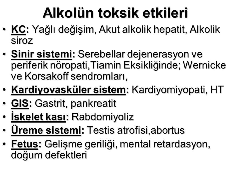 Alkolün toksik etkileri