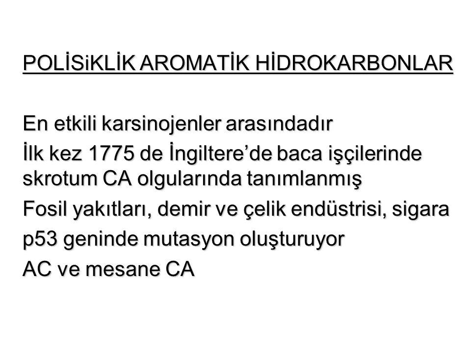 POLİSiKLİK AROMATİK HİDROKARBONLAR