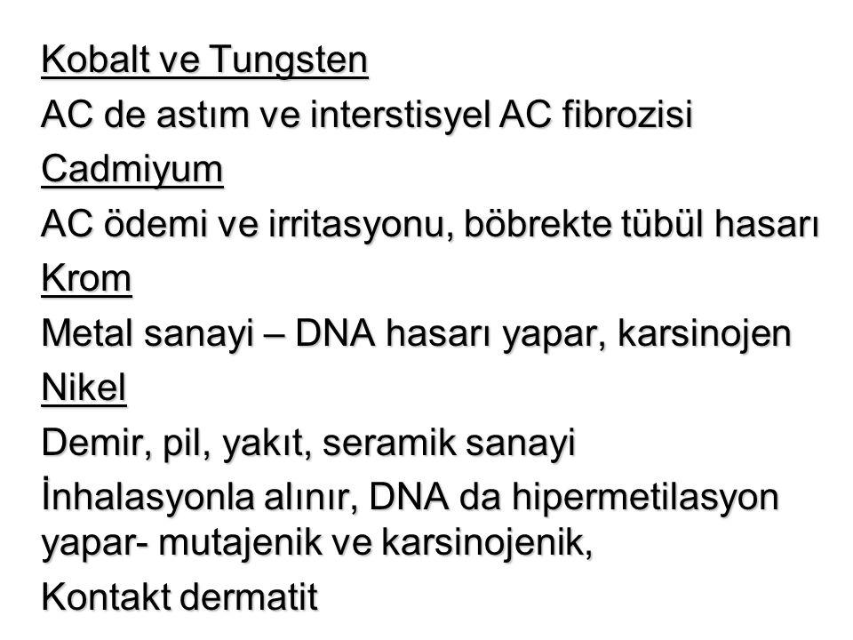 Kobalt ve Tungsten AC de astım ve interstisyel AC fibrozisi. Cadmiyum. AC ödemi ve irritasyonu, böbrekte tübül hasarı.