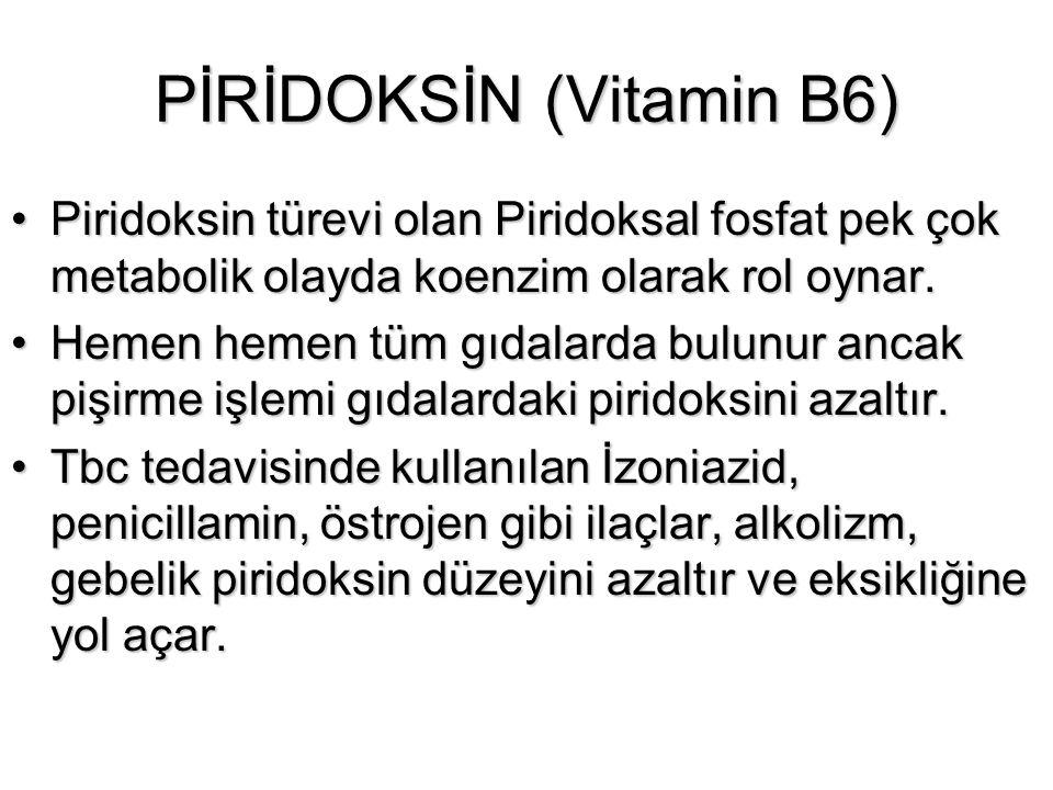 PİRİDOKSİN (Vitamin B6)