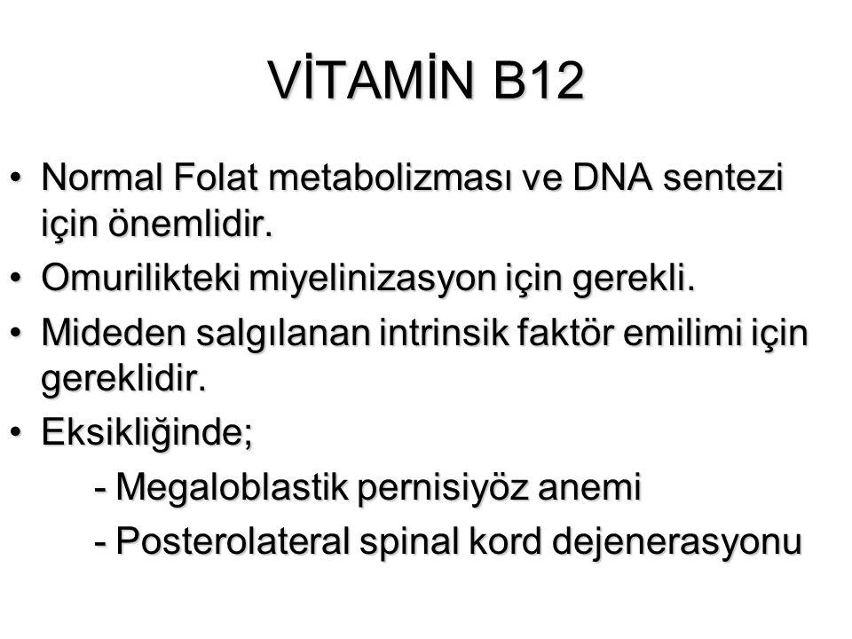 VİTAMİN B12 Normal Folat metabolizması ve DNA sentezi için önemlidir.