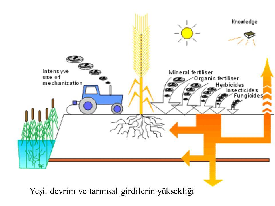 Yeşil devrim ve tarımsal girdilerin yüksekliği