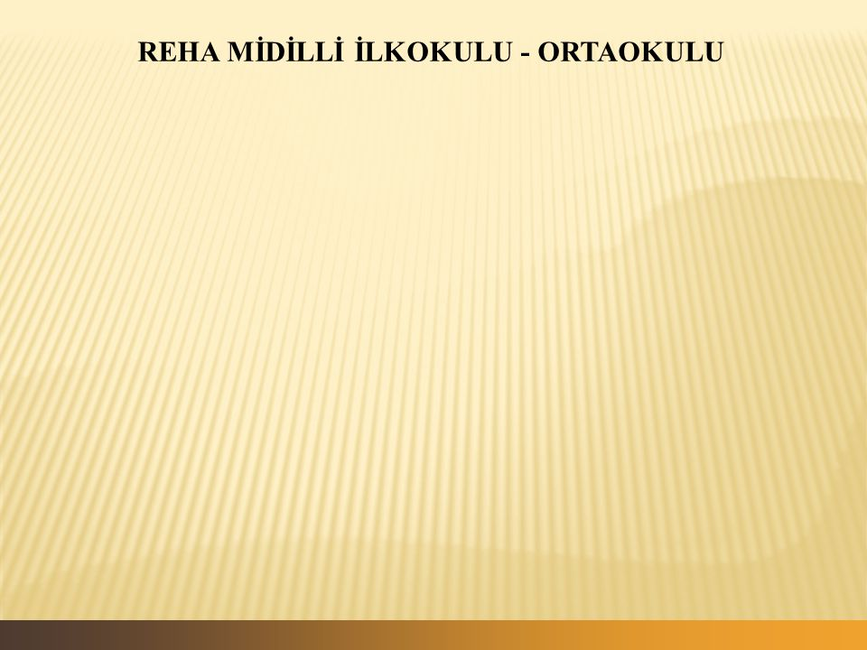 REHA MİDİLLİ İLKOKULU - ORTAOKULU