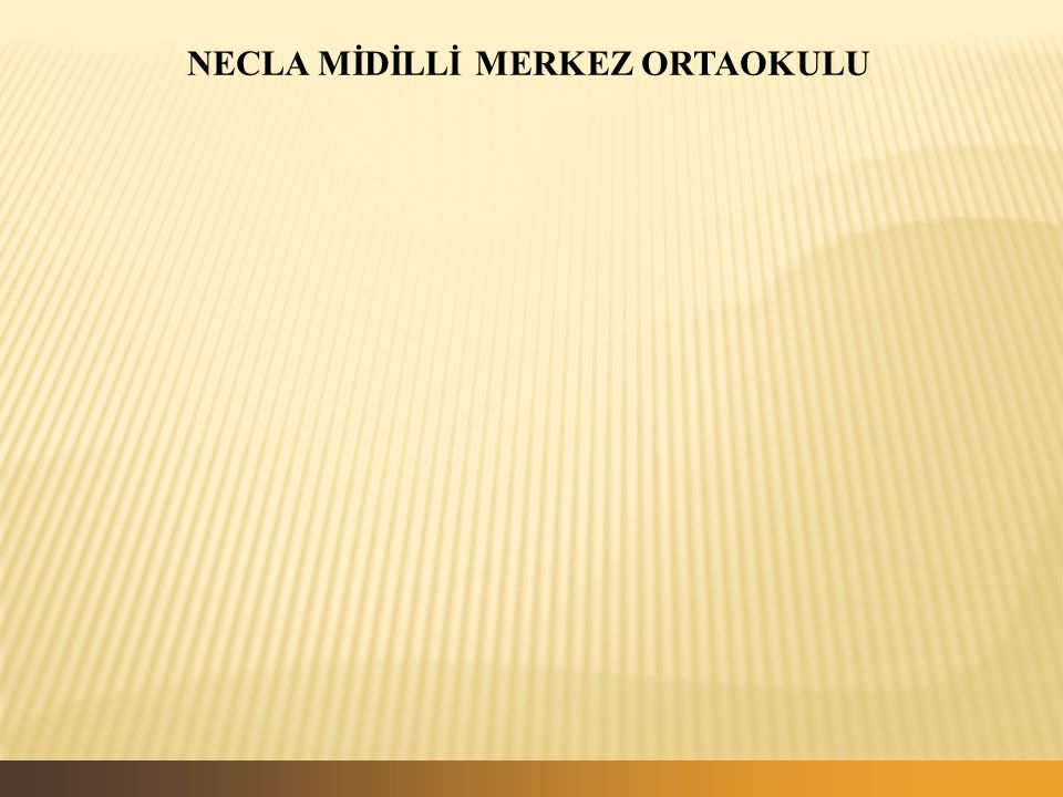 NECLA MİDİLLİ MERKEZ ORTAOKULU