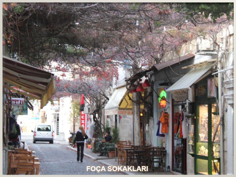 FOÇA SOKAKLARI