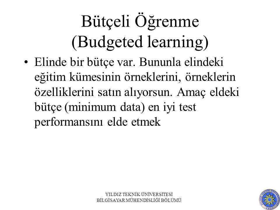 Bütçeli Öğrenme (Budgeted learning)