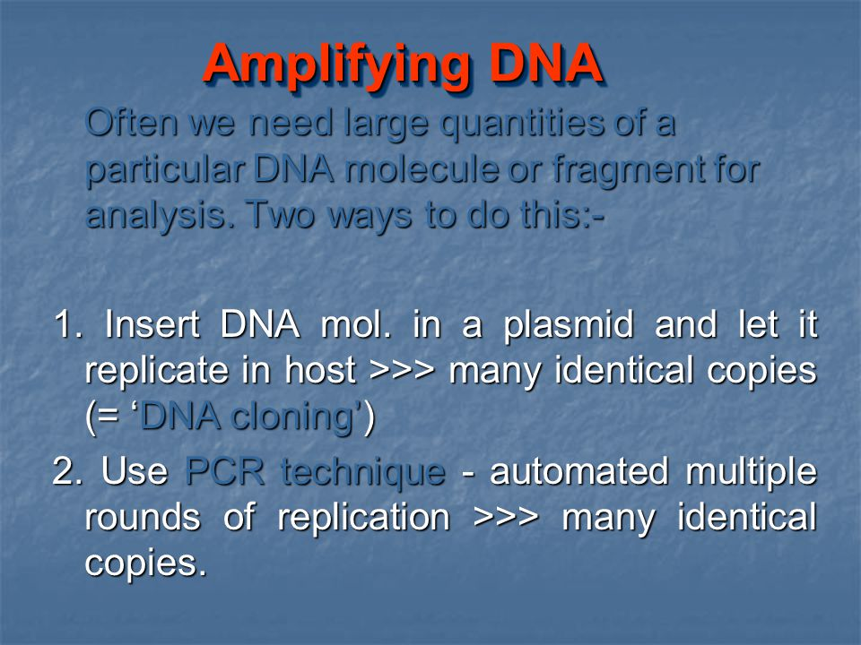 Amplifying DNA Often we need large quantities of a particular DNA molecule or fragment for analysis. Two ways to do this:-