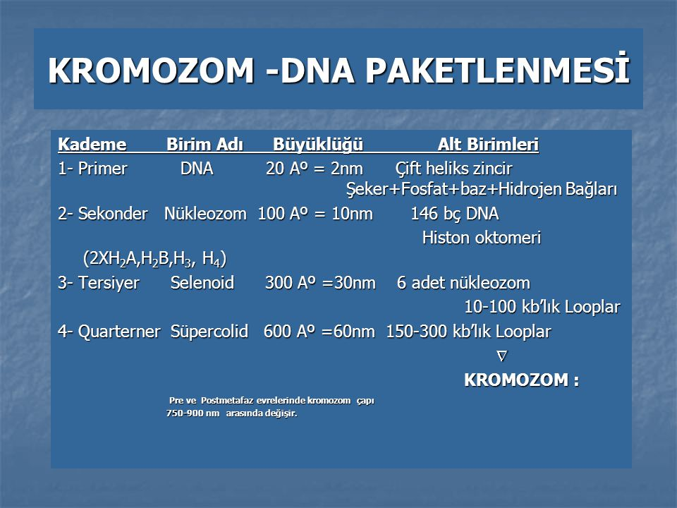 KROMOZOM -DNA PAKETLENMESİ
