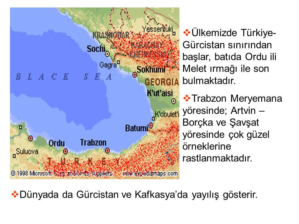 Ülkemizde Türkiye-Gürcistan sınırından başlar, batıda Ordu ili Melet ırmağı ile son bulmaktadır.