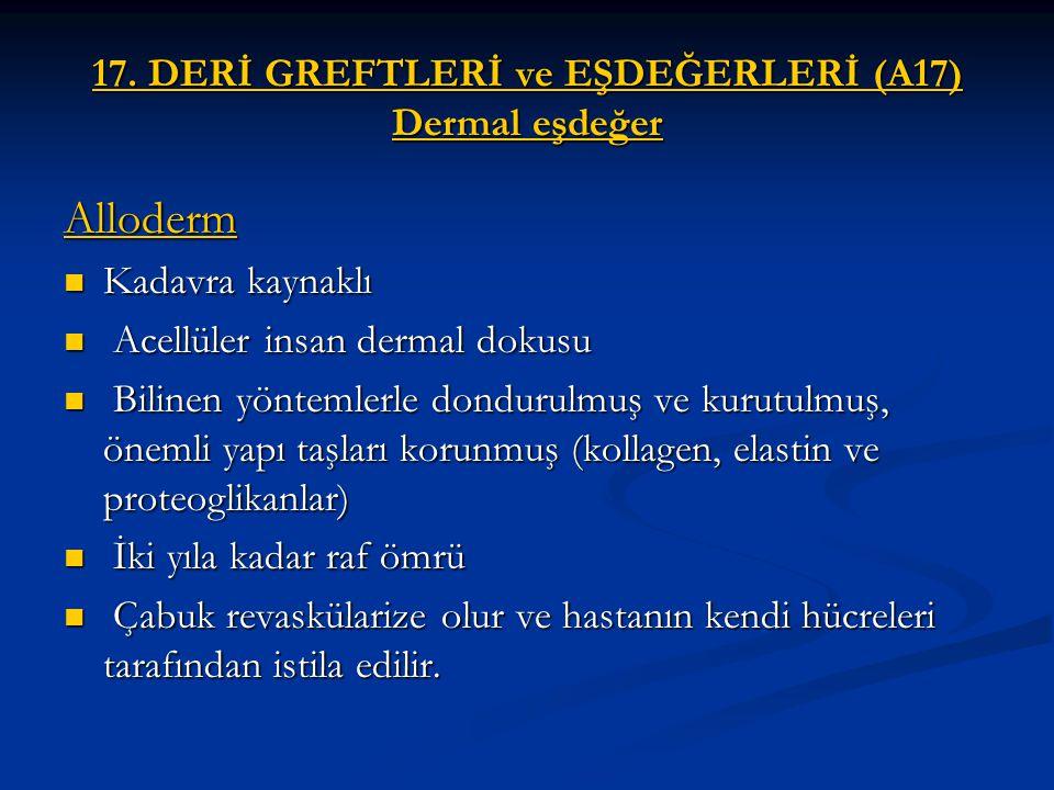 17. DERİ GREFTLERİ ve EŞDEĞERLERİ (A17) Dermal eşdeğer