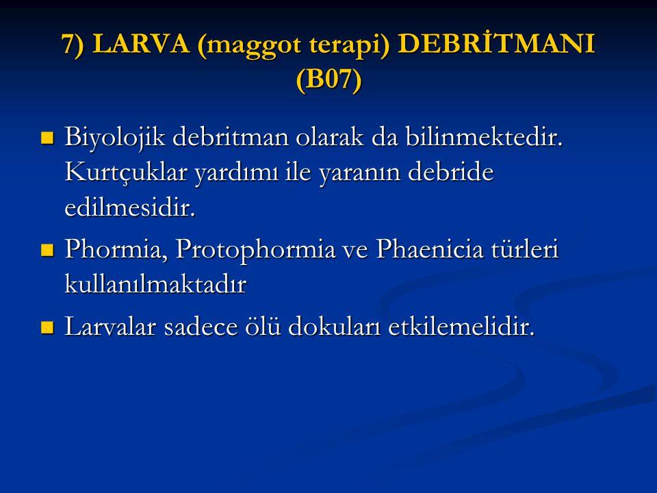 7) LARVA (maggot terapi) DEBRİTMANI (B07)