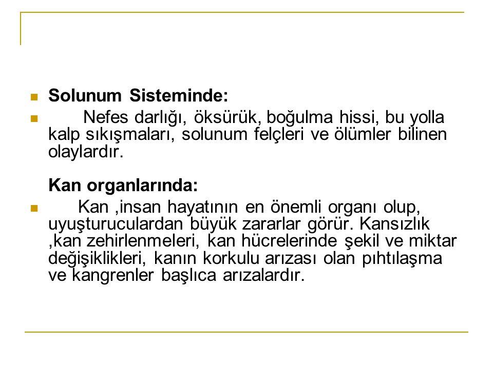 Solunum Sisteminde: