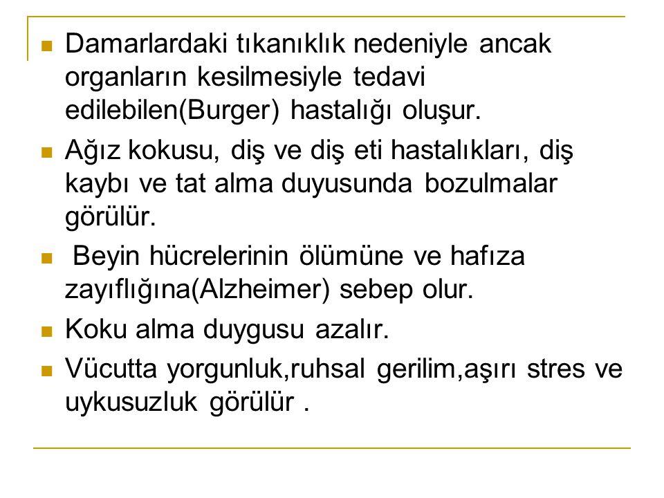 Damarlardaki tıkanıklık nedeniyle ancak organların kesilmesiyle tedavi edilebilen(Burger) hastalığı oluşur.