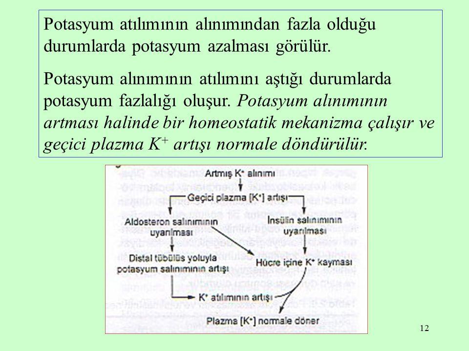 Potasyum atılımının alınımından fazla olduğu durumlarda potasyum azalması görülür.