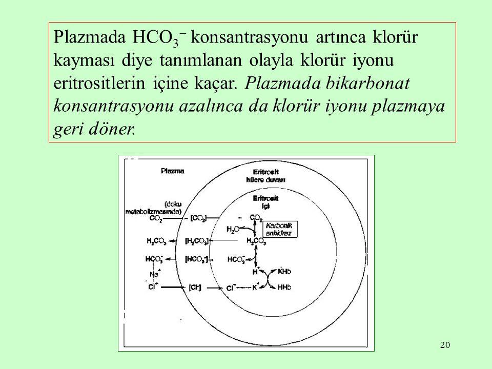 Plazmada HCO3 konsantrasyonu artınca klorür kayması diye tanımlanan olayla klorür iyonu eritrositlerin içine kaçar.
