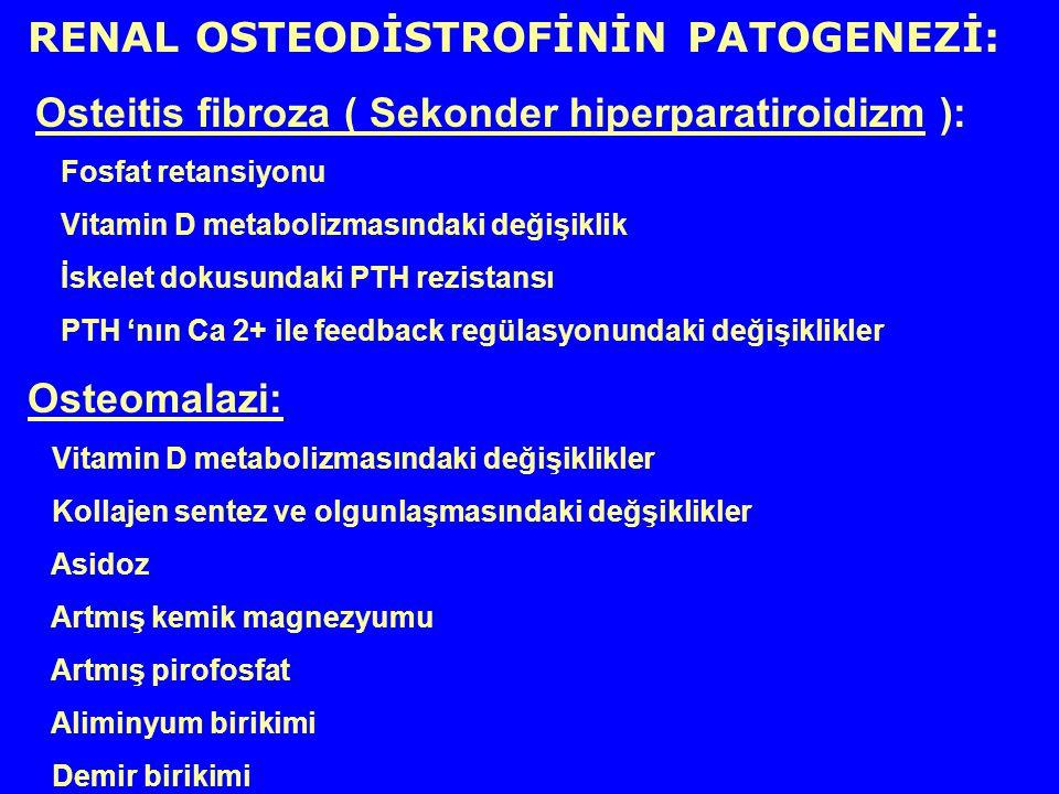 RENAL OSTEODİSTROFİNİN PATOGENEZİ: