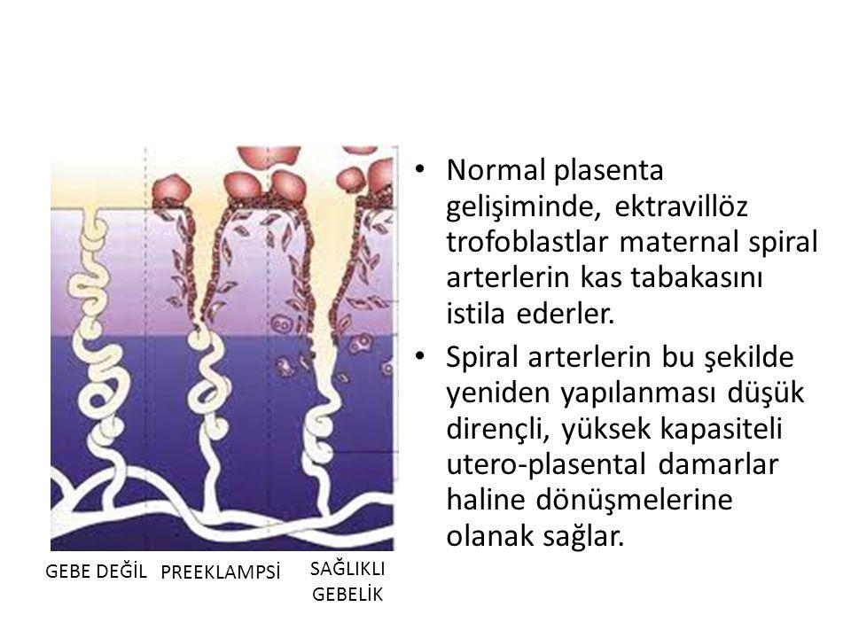 Normal plasenta gelişiminde, ektravillöz trofoblastlar maternal spiral arterlerin kas tabakasını istila ederler.