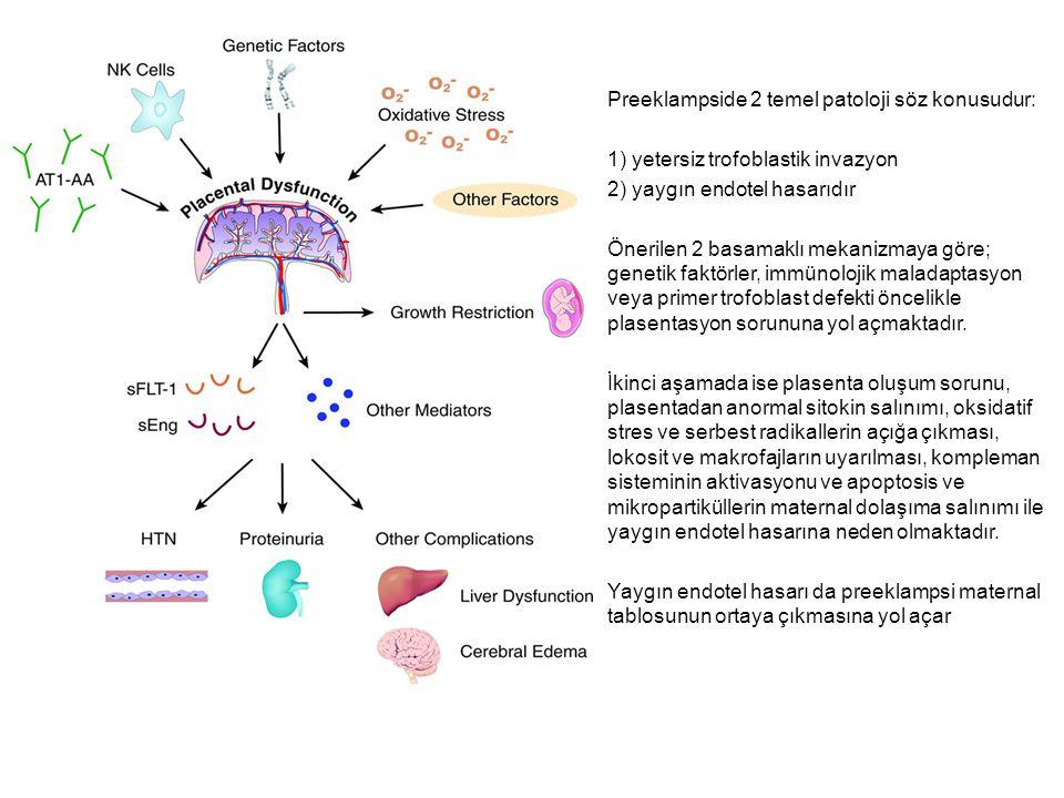 Preeklampside 2 temel patoloji söz konusudur: