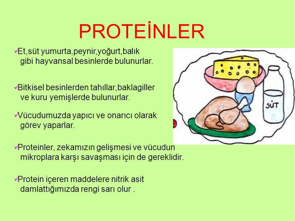 PROTEİNLER Et,süt yumurta,peynir,yoğurt,balık