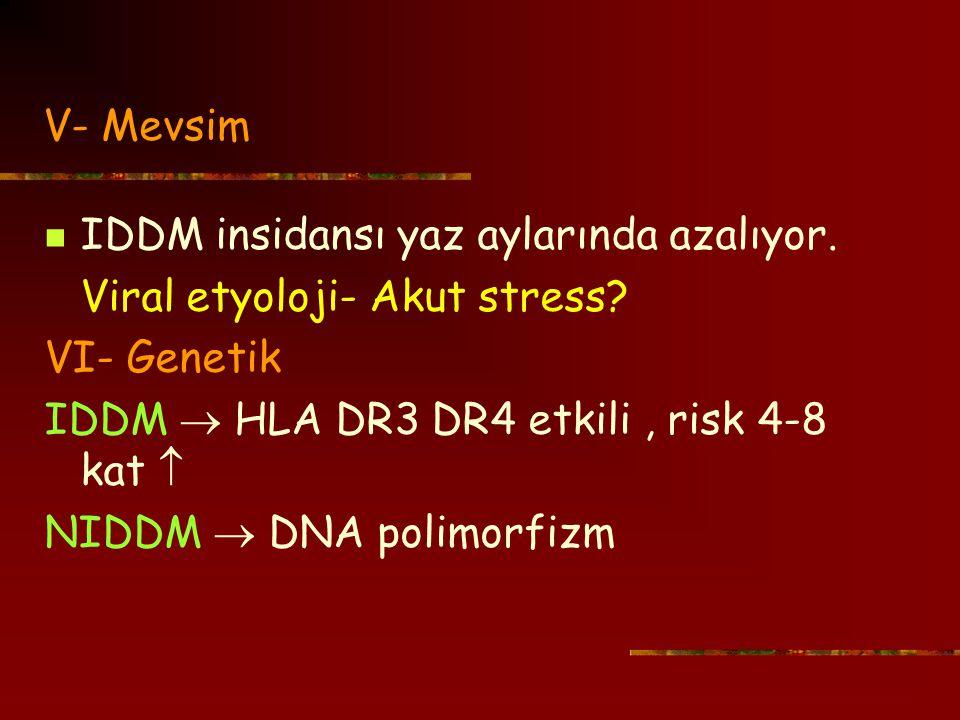 V- Mevsim IDDM insidansı yaz aylarında azalıyor. Viral etyoloji- Akut stress VI- Genetik. IDDM  HLA DR3 DR4 etkili , risk 4-8 kat 