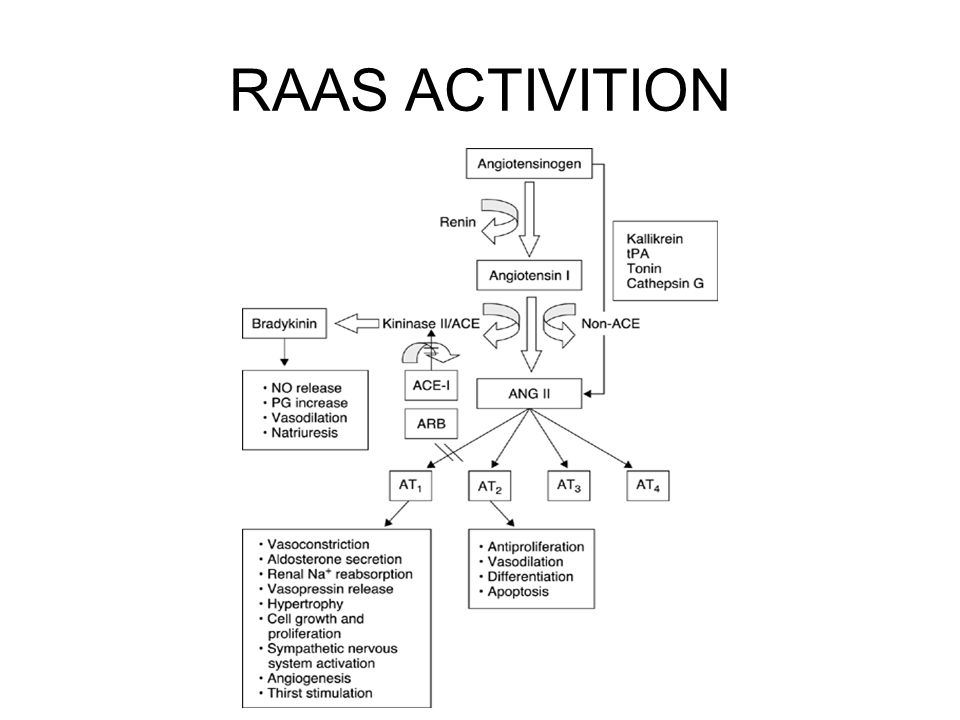 RAAS ACTIVITION