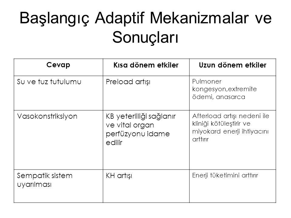 Başlangıç Adaptif Mekanizmalar ve Sonuçları