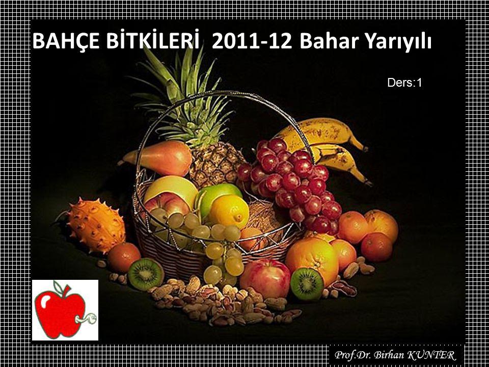 BAHÇE BİTKİLERİ 2011-12 Bahar Yarıyılı