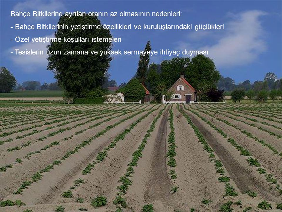 Bahçe Bitkilerine ayrılan oranın az olmasının nedenleri: