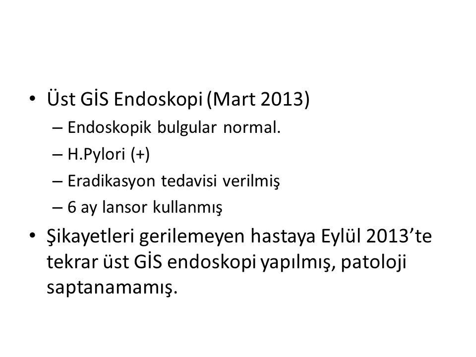 Üst GİS Endoskopi (Mart 2013)