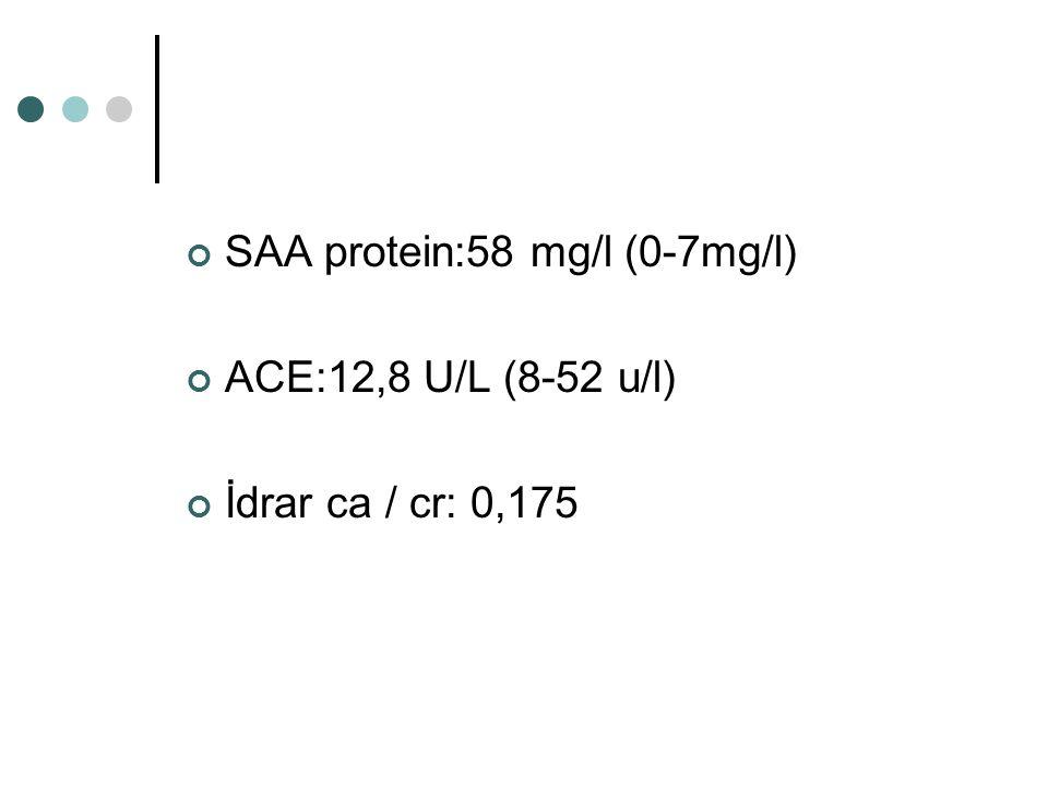 SAA protein:58 mg/l (0-7mg/l)