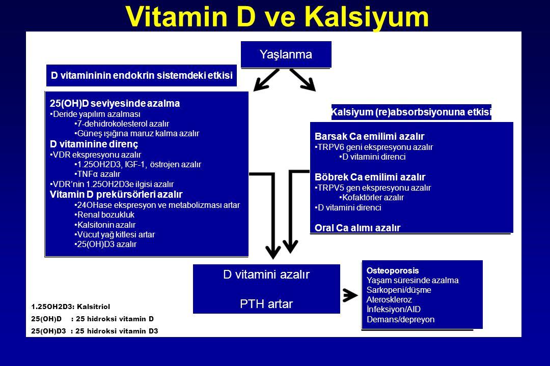 Vitamin D ve Kalsiyum Yaşlanma D vitamini azalır PTH artar