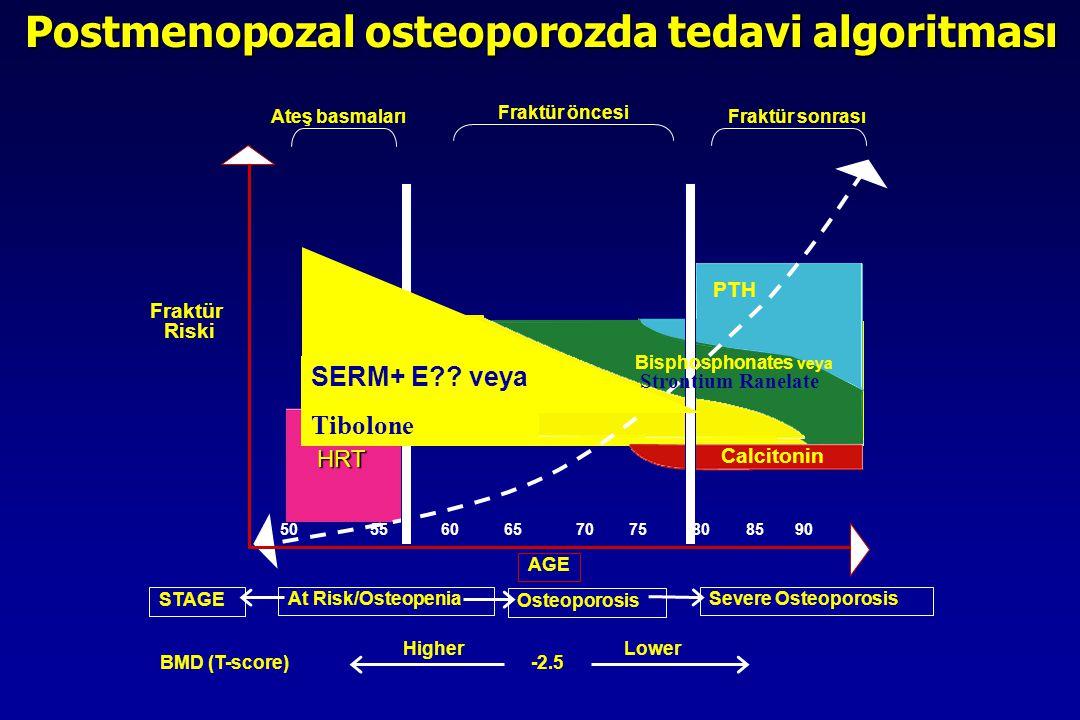 Postmenopozal osteoporozda tedavi algoritması