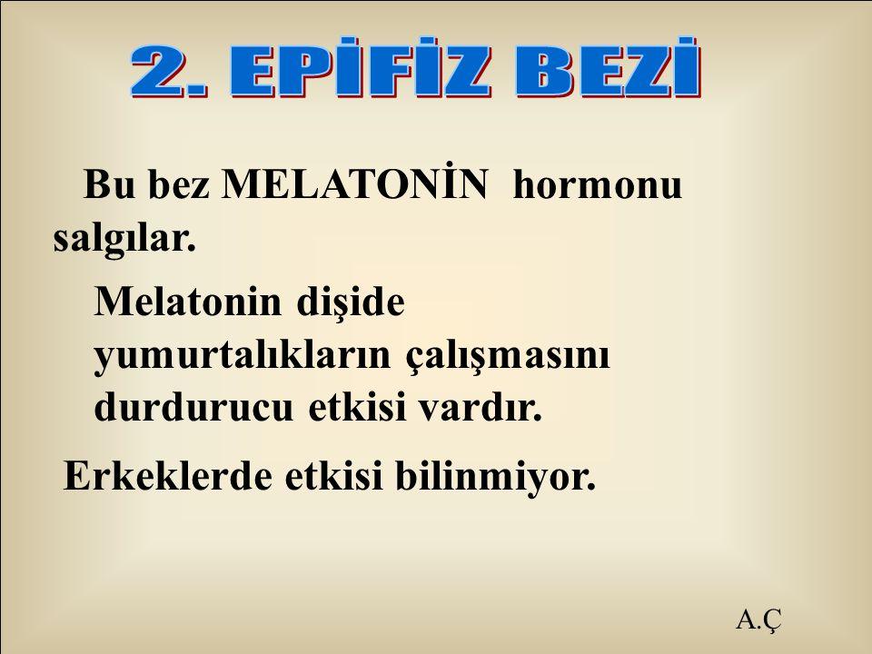 Melatonin dişide yumurtalıkların çalışmasını durdurucu etkisi vardır.