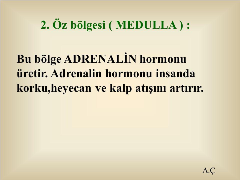 2. Öz bölgesi ( MEDULLA ) : Bu bölge ADRENALİN hormonu üretir. Adrenalin hormonu insanda korku,heyecan ve kalp atışını artırır.
