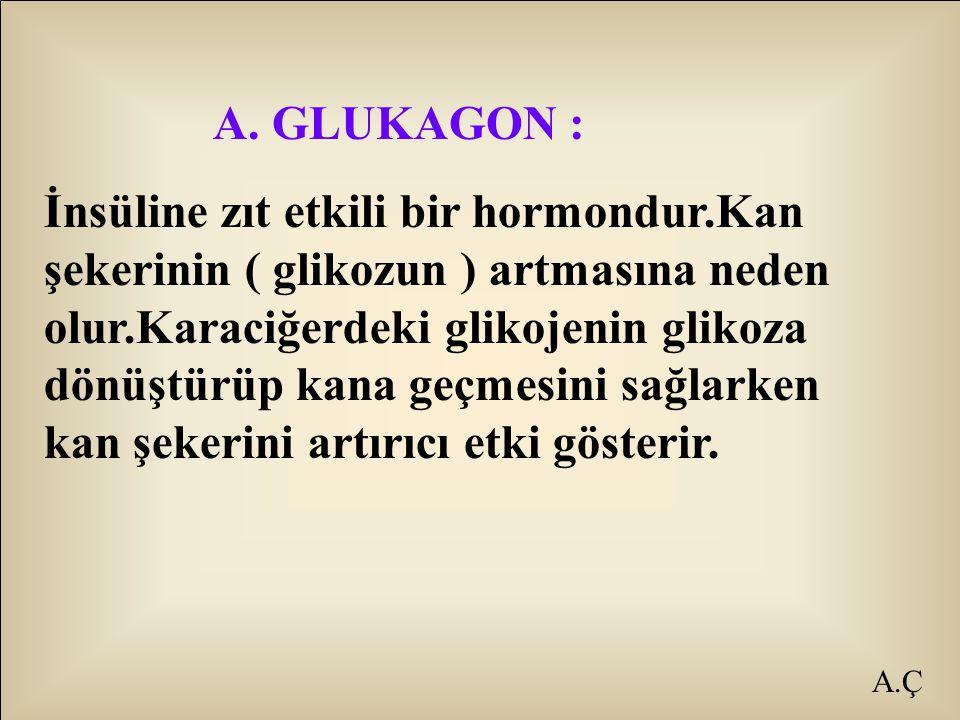A. GLUKAGON :