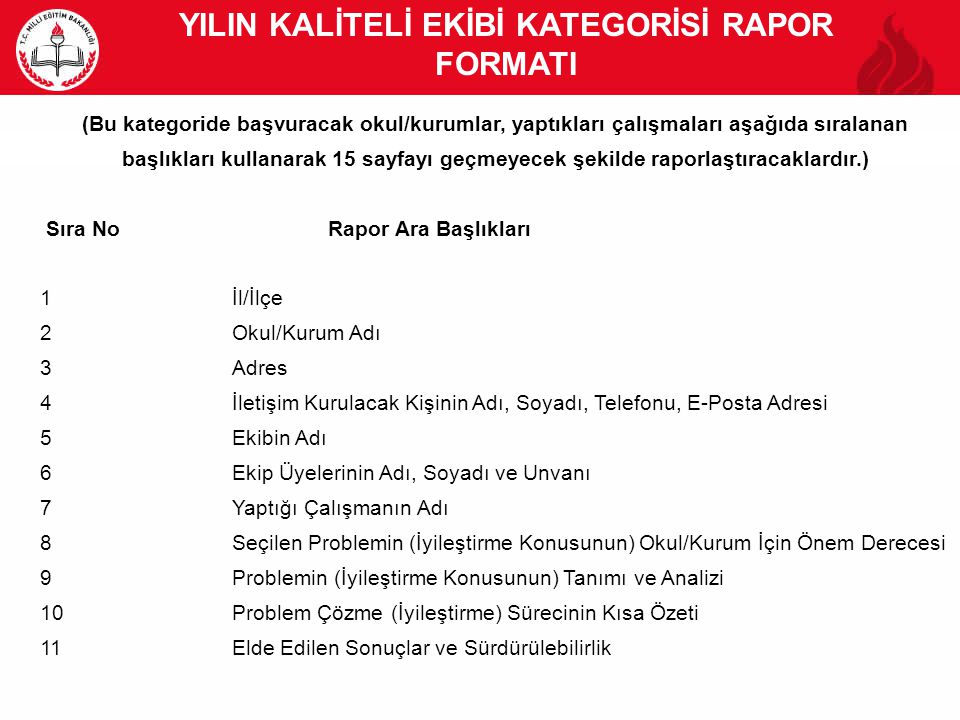 YILIN KALİTELİ EKİBİ KATEGORİSİ RAPOR FORMATI