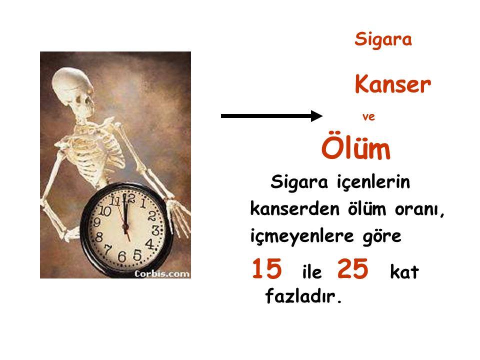 Ölüm 15 ile 25 kat fazladır. Kanser Sigara Sigara içenlerin