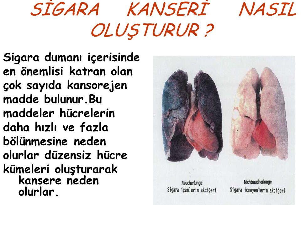 SİGARA KANSERİ NASIL OLUŞTURUR
