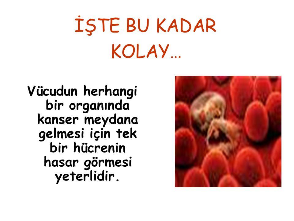 İŞTE BU KADAR KOLAY… Vücudun herhangi bir organında kanser meydana gelmesi için tek bir hücrenin hasar görmesi yeterlidir.