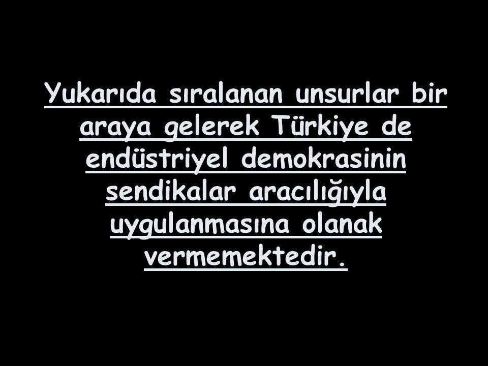 Yukarıda sıralanan unsurlar bir araya gelerek Türkiye de endüstriyel demokrasinin sendikalar aracılığıyla uygulanmasına olanak vermemektedir.