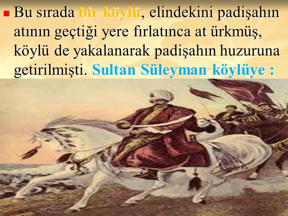Bu sırada bir köylü, elindekini padişahın atının geçtiği yere fırlatınca at ürkmüş, köylü de yakalanarak padişahın huzuruna getirilmişti.