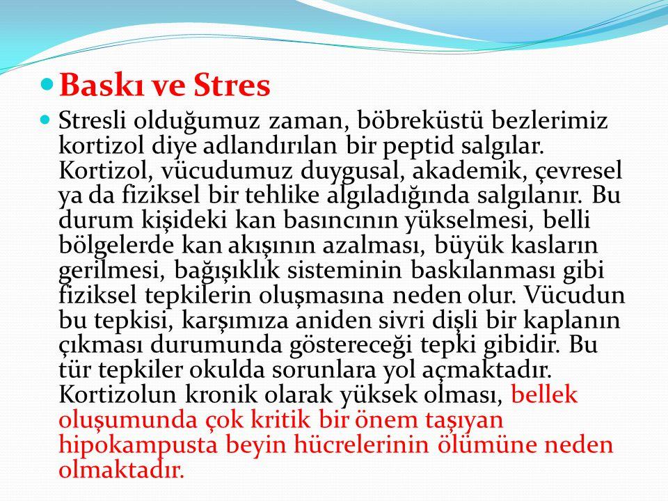 Baskı ve Stres
