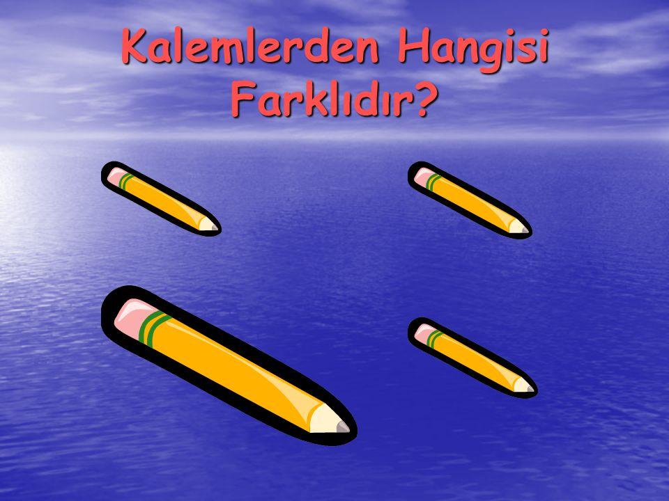Kalemlerden Hangisi Farklıdır