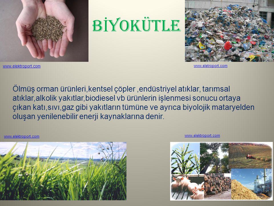 BİYOKÜTLE www.elektroport.com. www.eletroport.com.