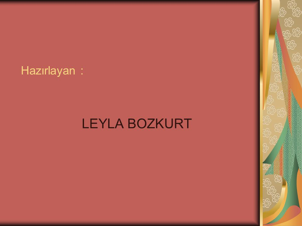 Hazırlayan : LEYLA BOZKURT