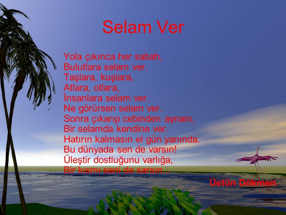 Selam Ver