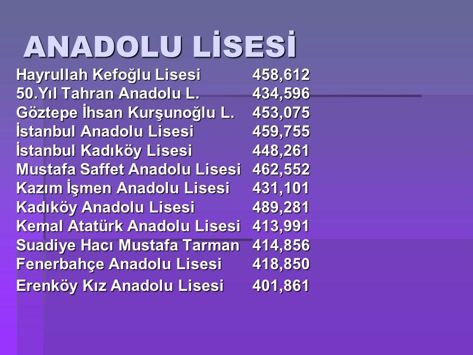 ANADOLU LİSESİ Hayrullah Kefoğlu Lisesi 458,612