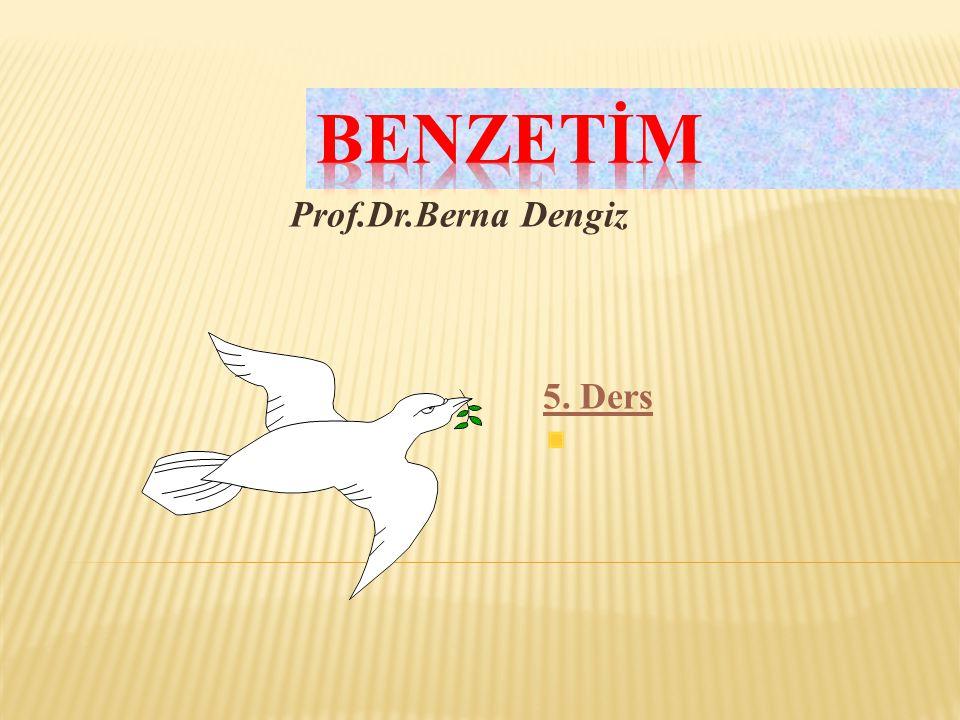 BENZETİM Prof.Dr.Berna Dengiz 5. Ders